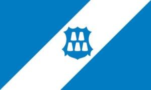 Прапор, місто Долина